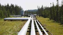 Oil, steam and natural gas pipelines run through the forest at the Cenovus Foster Creek SAGD oil sands operations near Cold Lake, Alberta in this July 9, 2012 file photo. (TODD KOROL/REUTERS)