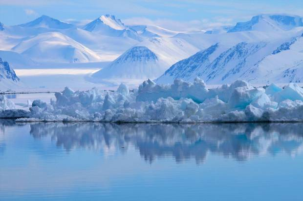 Lancaster Sound has sometimes been called the Serengeti of the Arctic because of the breadth of its biodiversity.