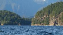 A scene from the Sunshine Coast north of Vancouver, in August 2011. (Dene Moore/The Canadian Press)