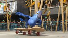 Blu skateboards to the rescue of his owner and best pal in a scene from the animated film Rio. (Blue Sky Studios/Blue Sky Studios)