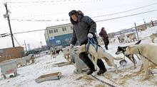 Rankin Inlet's Mayor John Hickes and his wife, Page Burt, tend to their sled dogs. There are no roads in or out of the area around Rankin Inlet, leaving air travel as the only way to travel. (Peter Power/The Globe and Mail)