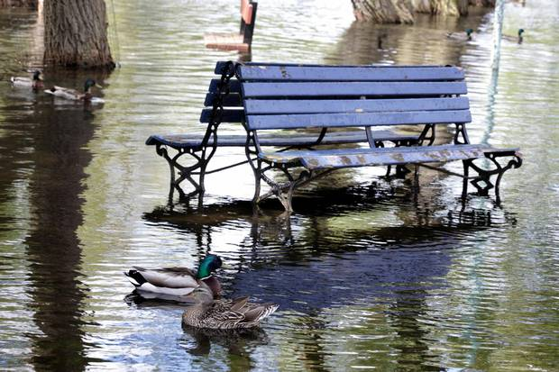 Toronto Islands have been plagued with flooding in areas as heavy rains have cause Lake Ontario levels to rise.