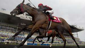 Queen's Plate winner Midnight Aria to skip Prince of Wales Stakes