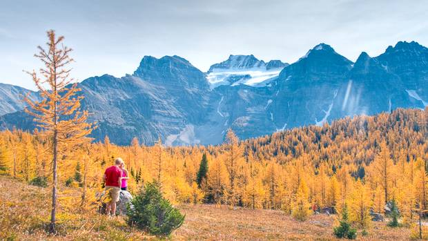 Larch Valley trail, Banff National Park, Alta. (Imran Hayat/Imran Hayat)