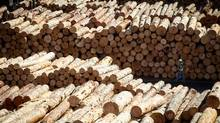 Stock in Ainsworth Lumber Co. Ltd. soared more than 30 per cent Sept. 5, 2013, a day after U.S. forestry giant Louisiana-Pacific announced a friendly, $1.1-billion (U.S.) takeover deal. (DARRYL DYCK FOR THE GLOBE AND MAIL)