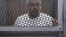 Al Jazeera journalist Mohamed Fahmy, a Canadian-Egyptian national, stands in a metal cage during his trial in a court in Cairo on March 24, 2014. (AL YOUM AL SAABI NEWSPAPER/REUTERS)