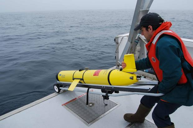 Researchers use gliders to track the whales and give vessels information on their locations to avoid strikes.