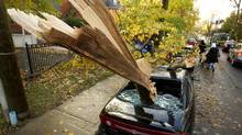 Storm damage in Toronto on the morning of Oct. 30, 2012 after the high winds and rain in Ontario due to Hurricane Sandy's influence as she came ashore on the eastern seaboard. A downed tree smashed this car on Bellevue Ave. with one branch puncturing the front dash and going into the engine (Peter Power /The Globe and Mail)