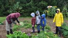 Even as they await the coming of spring, the students at Middle River Consolidated School on Cape Breton Island, N.S., are already looking forward to autumn. That's when they plan to set up a market on school grounds and sell the produce from their vegetable garden.