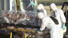 In this Aug. 7, 2014 file photo provided by the Spanish Defense Ministry, aid workers and doctors transfer Miguel Pajares, a Spanish priest who was infected with the Ebola virus while working in Liberia, from a plane to an ambulance as he leaves the Torrejon de Ardoz military airbase, near Madrid, Spain. (Uncredited/AP)
