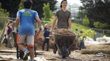 Volunteers move mulch at the Beacon Food Forest project in Seattle on June 15, 2013. (John Lehmann/The Globe and Mail)