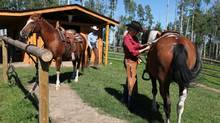 At Ride the Wind, a two-hour drive from Calgary, both experienced and new riders can help corral the cattle. (Travel Alberta)