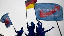 Supporters of the Eurosceptic Alternative for Germany (AfD) party wear morph suits and wave flags during an event to rally support for Sunday's European Parliament elections at the Brandenburg Gate in Berlin May 23, 2014. (THOMAS PETER/Reuters)