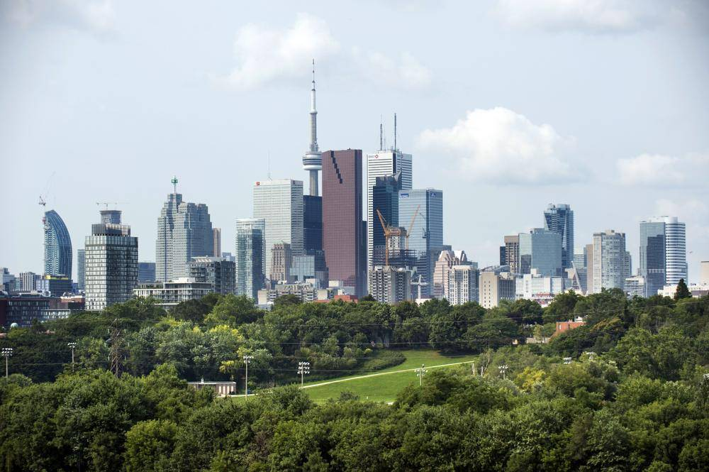 The city has set a goal to increase canopy coverage boosting it from its current 28 per cent to 40 per cent by 2057. (Fred Lum/The Globe and Mail) & Will Torontou0027s ambitious push to grow its urban canopy pay off ...