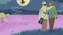 Bird Watchers Ben Barrett-Forrest Illustration (Neal Cresswell/Neal Cresswell for The Globe and Mail)