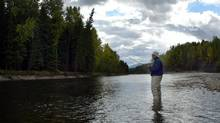 A fly fisherman casts onto the Elk river near Fernie, B.C., Sept. 19, 2003. The Elk river is famous for cutthroat trout and is a favorite fishing destination. (JEFF MCINTOSH/CP)