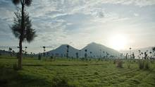 The mostly extinct Virunga chain of volcanoes straddles the borders of Rwanda, Uganda and the Democratic Republic of Congo.