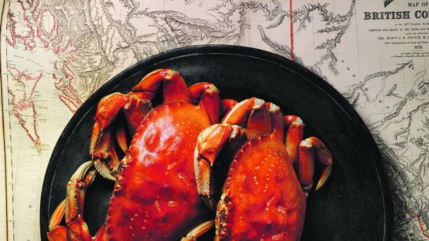 How to buy Dungeness crab: According to Sinclair Philip of the Sooke Harbour House Inn in Victoria, it's best to purchase crab that's still alive. (Just watch out for the claws; always handle a live crab from the back of the shell.) A live crab should be stored in the fridge (this will help to ease its feistiness before you boil it), but don't freeze it and never put it in fresh water; that's sure to kill it. (Steve Krug for The Globe and Mail)