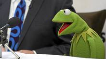 Kermit the Frog appears at a Toronto press conference, Oct. 25, 2011. (Kevin Van Paassen / The Globe and Mail)