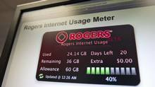 An internet usage meter is displayed on a computer screen in Ottawa on Feb. 1, 2011. (Sean Kilpatrick/THE CANADIAN PRESS)