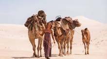 Mia Wasikowska does her best to portray the nuance of the remarkable trek undertaken by Robyn Davidson across the Australian desert in the seventies.