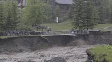 Canmore, Alta., has declared a local state of emergency due to rising waters in Cougar Creek. Flood waters have made banks along the creek unstable and dangerous, and as a result a number of residents on the south side of the creek have been forced to evacuate. (Laura Leyshon For The Globe and Mail)