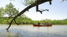 Writer Ian Merringer (in the stern seat) and Jim Robb, General Manager of the Friends of the Rouge Watershed (in the bow seat) paddle near the mouth of the Rouge River in Scarborough, Ont. June 28/2011. (Kevin Van Paassen/The Globe and Mail)