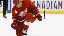 Detroit Red Wings right wing Daniel Alfredsson (RICK OSENTOSKI/USA TODAY SPORTS)