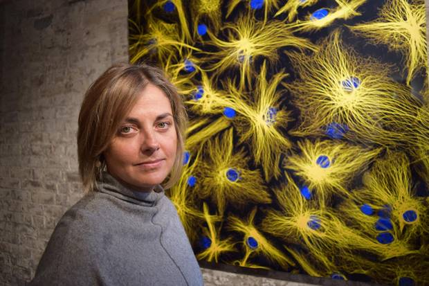Radha Chaddah, the artist that put together the stem-cell exhibition, says she is often surprised by the sense of connection her images seem to evoke, even when viewers are unsure what they are looking at.
