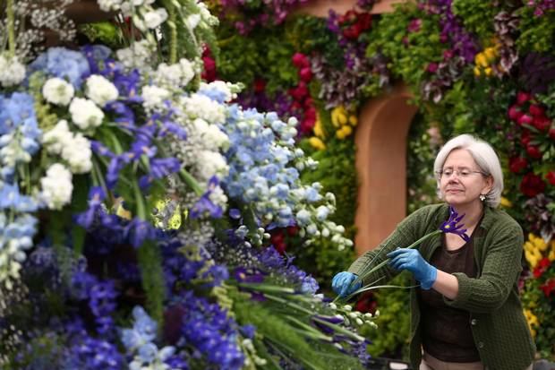 An exhibitor prepares a display at the RHS Chelsea Flower Show in London, Britain May 21, 2017.