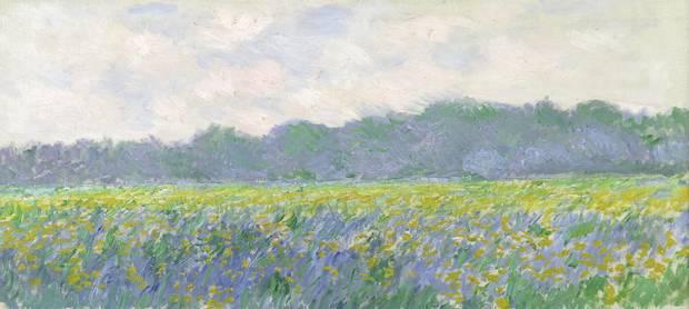 Claude Monet Champ d'iris jaunes à Giverny, 1887 oil on canvas