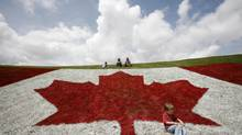 Canadian flag painted on a hillside at a Canada Day celebration in London, Ont.