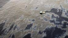 An aerial view shows oil that seeped from a well operated by Chevron at Frade, on the waters in Campos Basin in Rio de Janeiro state Nov. 18, 2011. (Handout/Reuters)