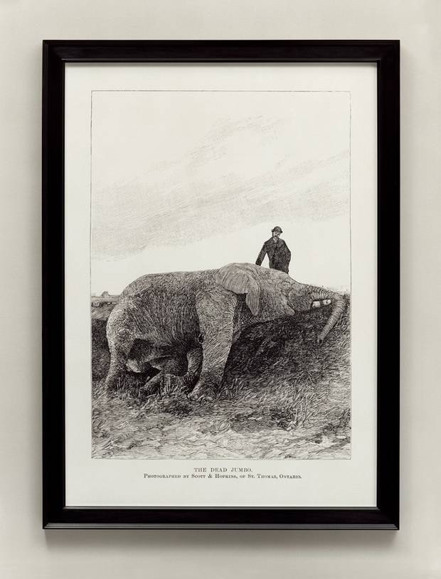 """Ydessa Hendeles's""""The Dead Jumbo."""" includes wall panels based on material published in Harper's Weekly in 1885."""