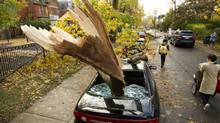 A downed tree smashed a car on Bellevue Avenue in Toronto. High winds and rain from Sandy caused damage in Ontario as the superstorm came ashore on the Eastern Seaboard. (Peter Power/The Globe and Mail)