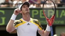 Andy Murray of Britain celebrates on match point in his victory over David Ferrer of Spain during the men's final of the Sony Open tennis tournament in Key Biscayne, Florida March 31, 2013. (KEVIN LAMARQUE/REUTERS)