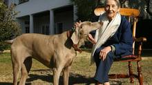 Nadine Gordimer at her home in Johannesburg on March 19, 2007. (Jerome Delay/AP)