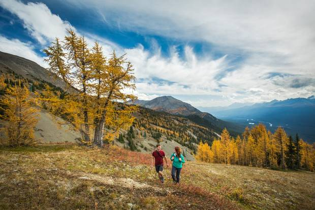 The Larch Valley Trail is a steep 4.3-kilometre trek in Banff National Park.