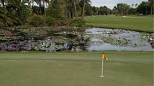 Lily pond at Jupiter Island Club