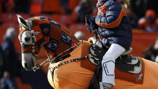 The Denver Broncos mascot runs onto the field leading the players before they met the Baltimore Ravens in their NFL AFC Divisional playoff football game in Denver, Colorado January 12, 2013. (JEFF HAYNES/REUTERS)