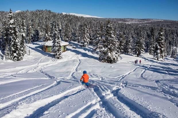 Kasper skis downhill at Tweedsmuir Ski Club.