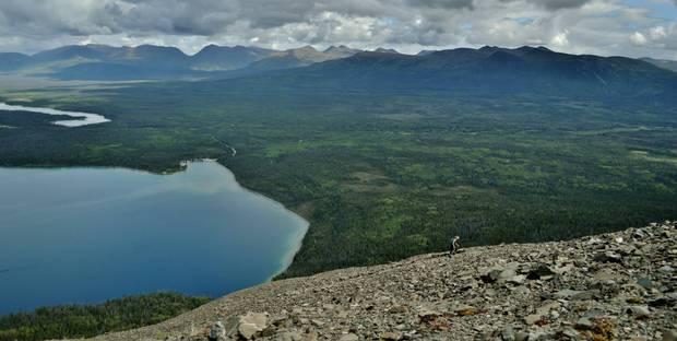Shannon Busta climbing the first half of King's Throne in Kluane National Park, Yukon.