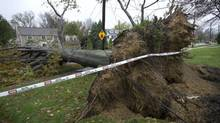 Storm damage from Hurricane Sandy is seen in Cleveland, Ohio Wednesday October 31, 2012. (Kevin Van Paassen/The Globe and Mail)