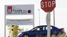 Contractors, employees, etc. come and go from XL Foods Lakeside Packers in Brooks. (Larry MacDouga)