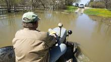 Robin Carter drives his tractor beside his home along the intentional breach of the dike along the Assiniboine River Monday, May 16, 2011 in Manitoba. (Ryan Remiorz/The Canadian Press/Ryan Remiorz/The Canadian Press)
