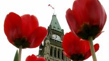 The Peace Tower on Parliament Hill is framed by blooming tulips (CHRIS WATTIE)