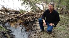 Gord Johnston surveys the oil-soaked banks of the Red Deer River in Alberta following an oil leak, June 8, 2012. (Nathan VanderKlippe/The Globe and Mail)