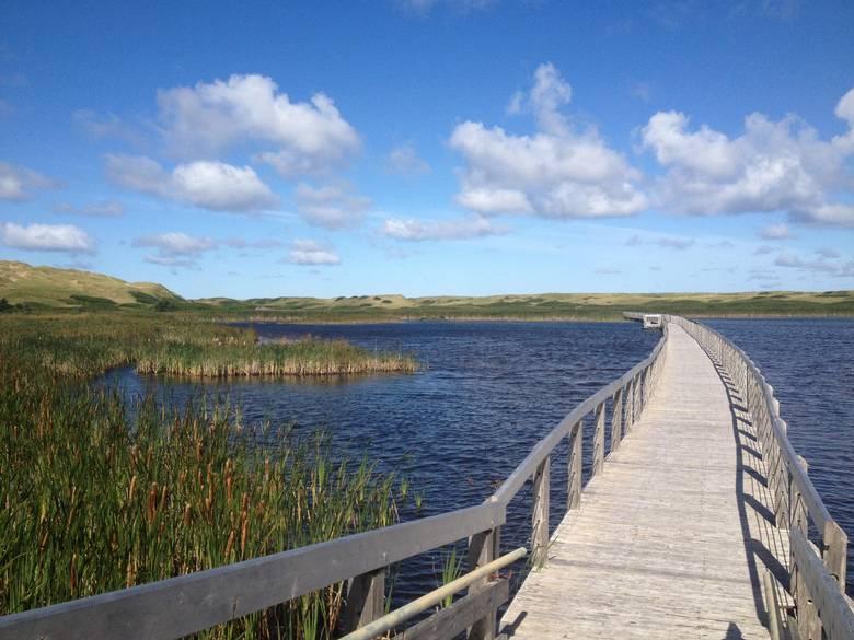 Floating boardwalk at Prince Edward Island National Park.