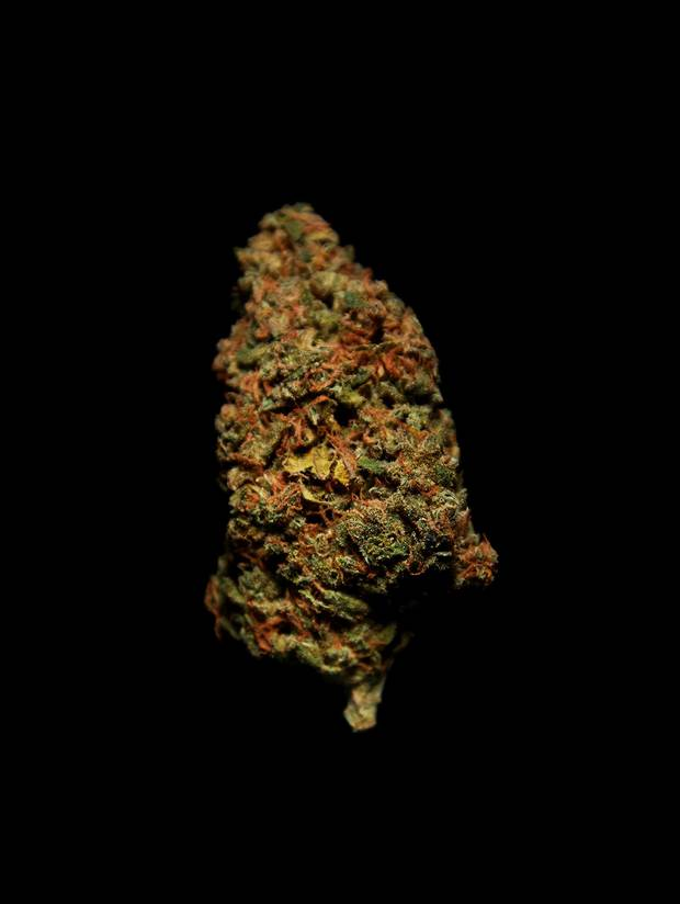 Super Lemon OG (DNA certified). Strain: indica-dominant hybrid. Appearance: rich green flowers, apricot hairs. Aroma: citrus fruit, lemony, sweet finish. Experience: balanced after-dinner buzz