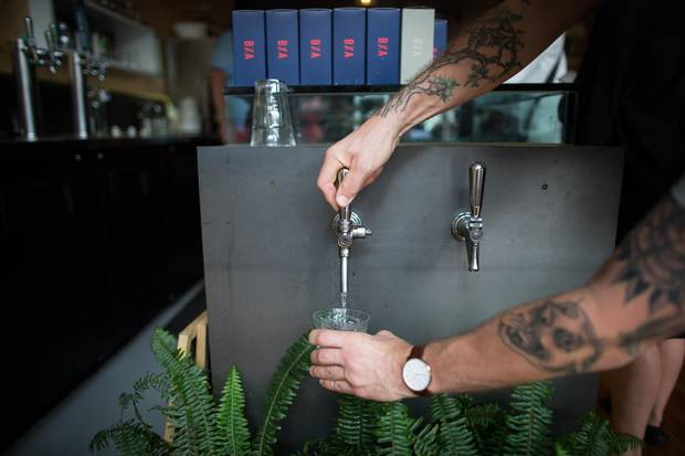 Self-serve water taps are mounted over a bushy boxed fern to catch drips.